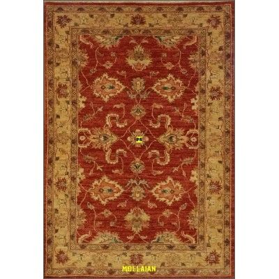 Soltanabad extra gold 150x103-Mollaian-Gabbeh-Contemporary-Rugs-Gabbeh and Modern Carpets-Sultanabad - Soltanabad-7263-499,00...