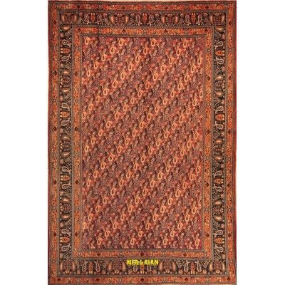 Birgiand Old Persia 315x210 Mollaian carpets 5658 Outlet Deals -50% 750,00€ Outlet Deals